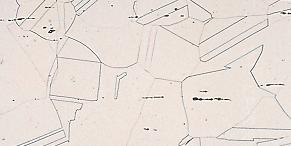 結晶粒 熱処理後素材断面